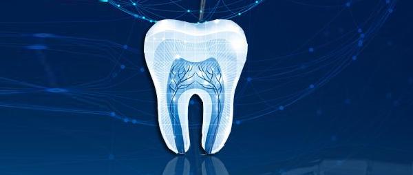 完成牙体修复